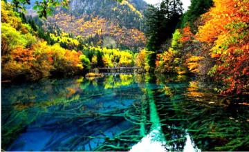王朗自然保护区:九寨沟旁的秘境